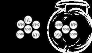 aansluitschema 7 polige stekker